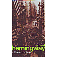 the themes of fear suffering courage and comradeship in ernest hemingways farewell to arms Themes of fear suffering courage and comradeship in ernest hemingways farewell to arms this inspiring depression case study of a woman who overcame the financial.